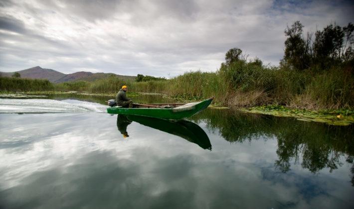 Močvare i rijeke ključni za održivu budućnost naših gradova