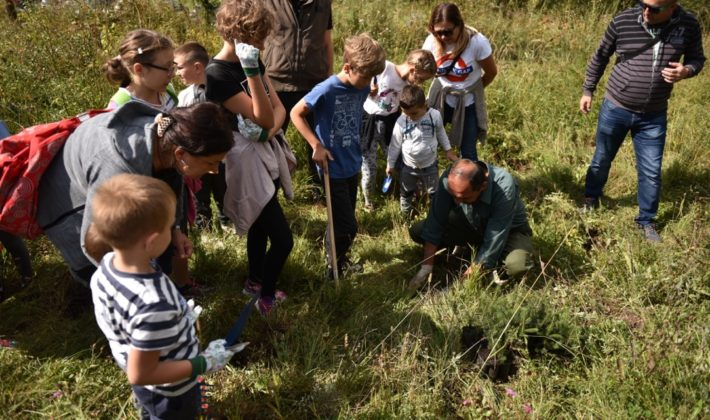 Polaznici škole Helen Doron English Sarajevo u akciji sadnje drveća